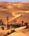 desert_x1k2aiu6